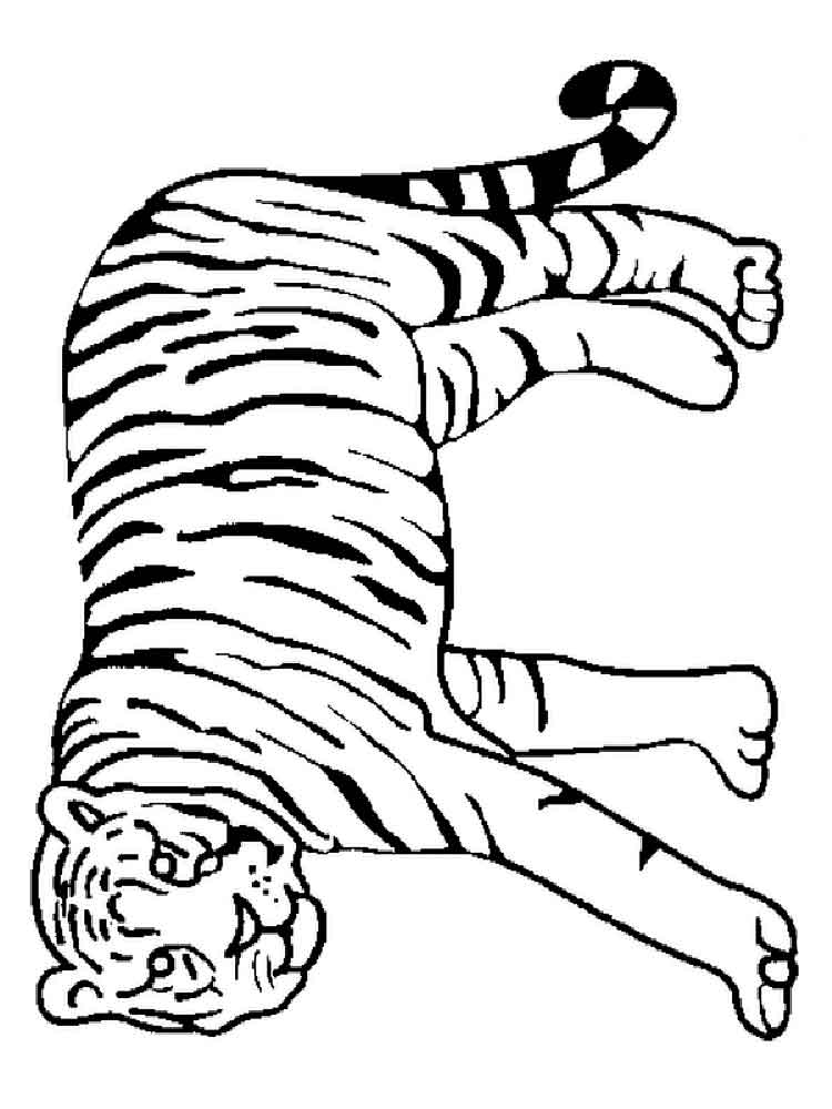 tiger pictures to print coloring pages tiger new 14 mammals gt tiger free pictures print to tiger
