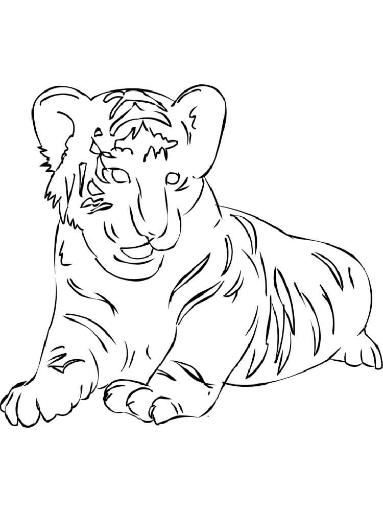 tiger pictures to print free tiger coloring pages print to tiger pictures