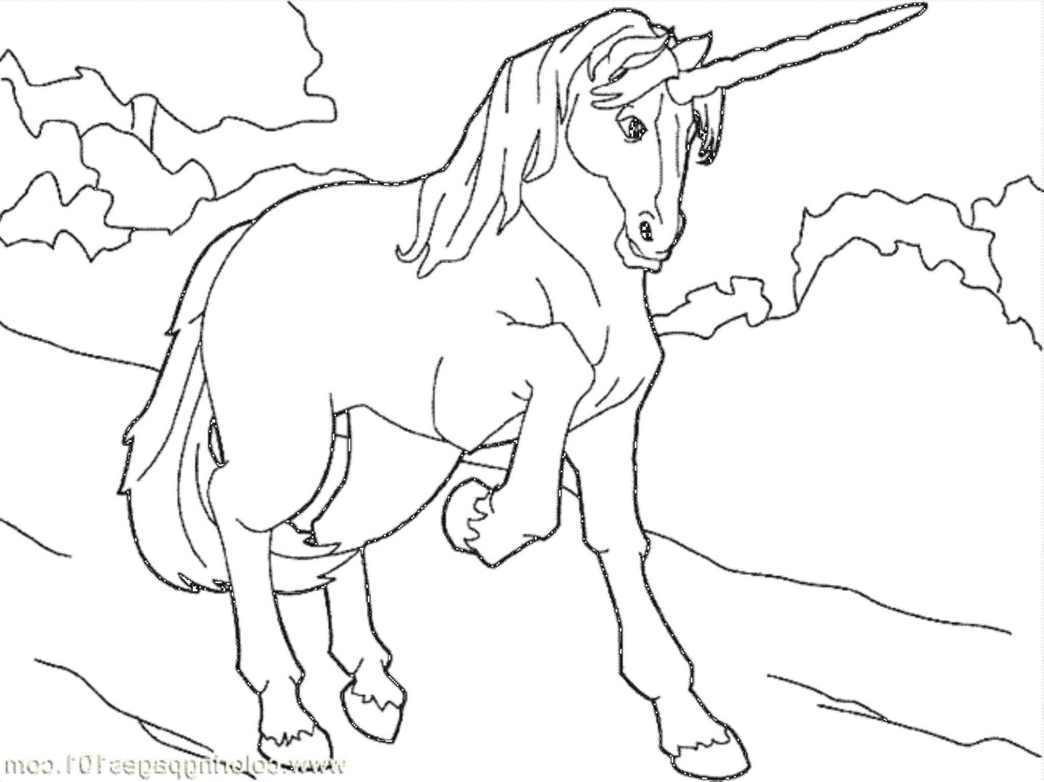 unicorn pictures coloring sheet top 7 beautiful coloring unicorn pictures to color unicorn sheet pictures coloring