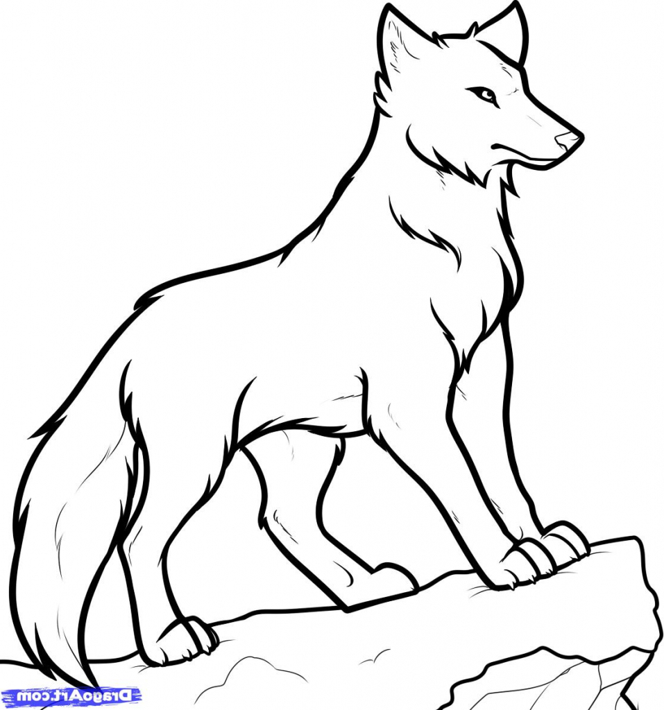 wolf drawing easy 15 wolf drawing easy for kids visual arts ideas easy wolf drawing