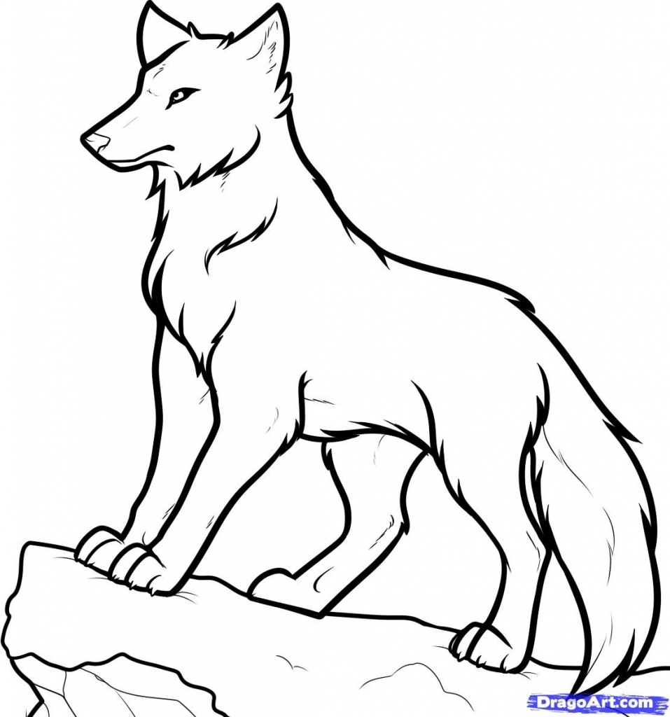 wolf drawing easy howling coyote drawing at getdrawings free download wolf easy drawing