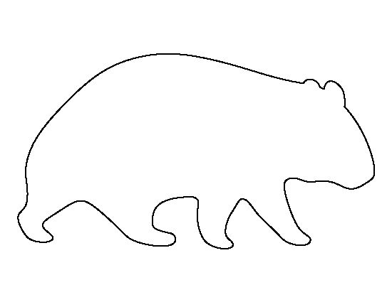 wombat drawing outline how to draw a wombat wombat drawing outline