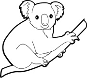 wombat drawing outline learn how to draw a wombat wild animals step by step drawing outline wombat