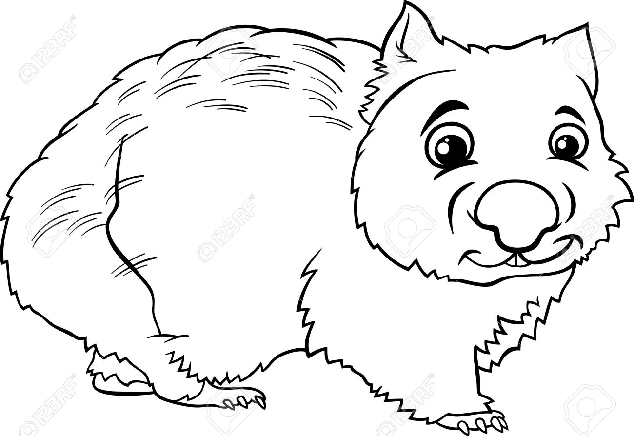 wombat drawing outline wombat outline clipart best wombat outline drawing 1 1