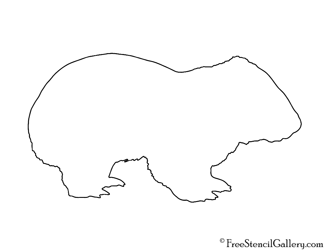 wombat drawing outline wombats drawing wombat outline