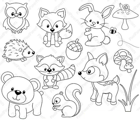 woodland animal coloring pages woodland animals color page dibujos de animales pages woodland coloring animal