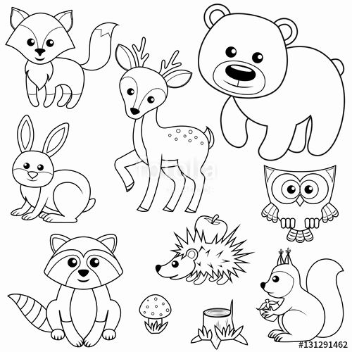 woodland animal coloring pages woodland animals coloring page in 2020 animal coloring animal woodland pages coloring