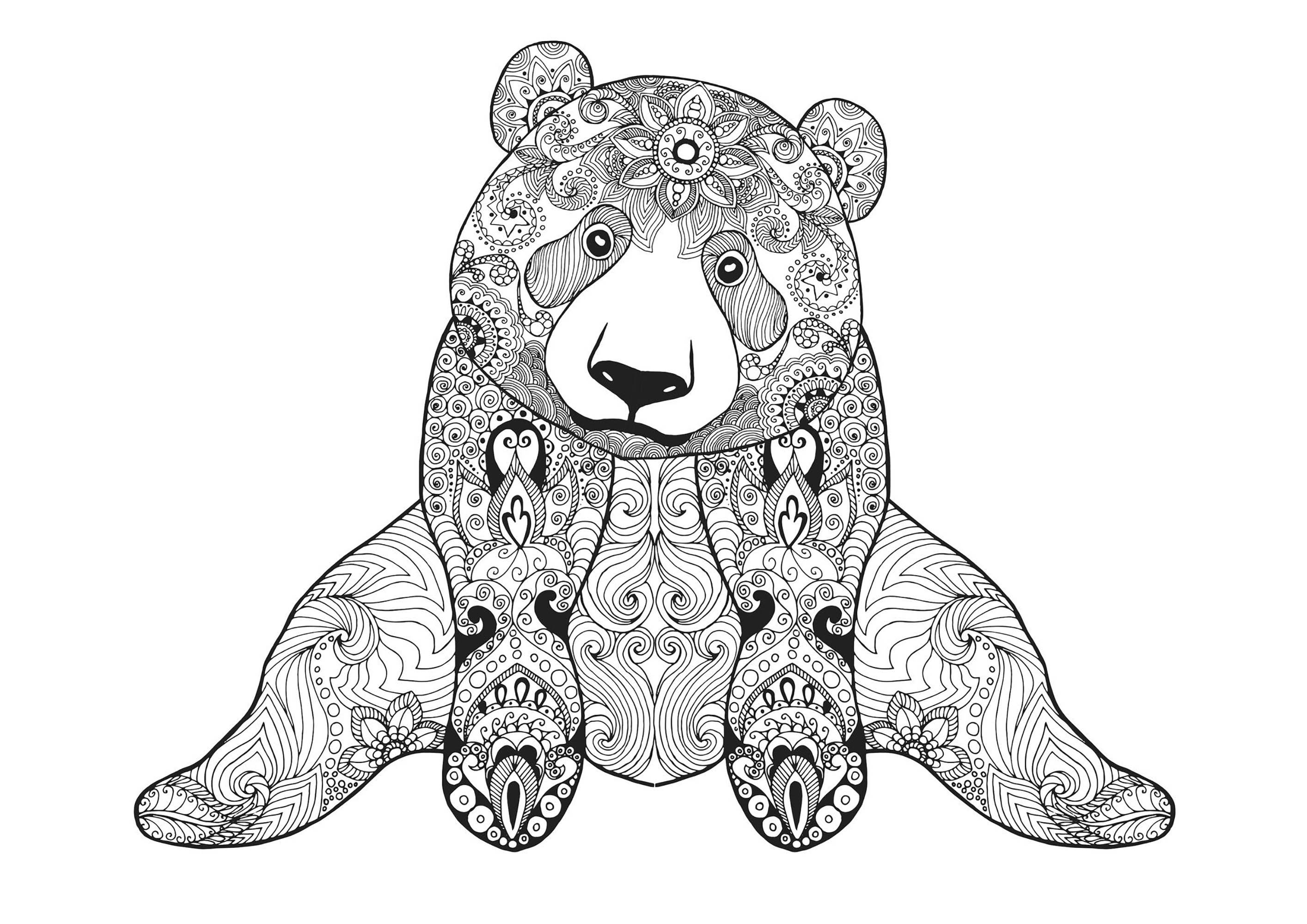 www coloring sheets sitting bear bears adult coloring pages coloring www sheets