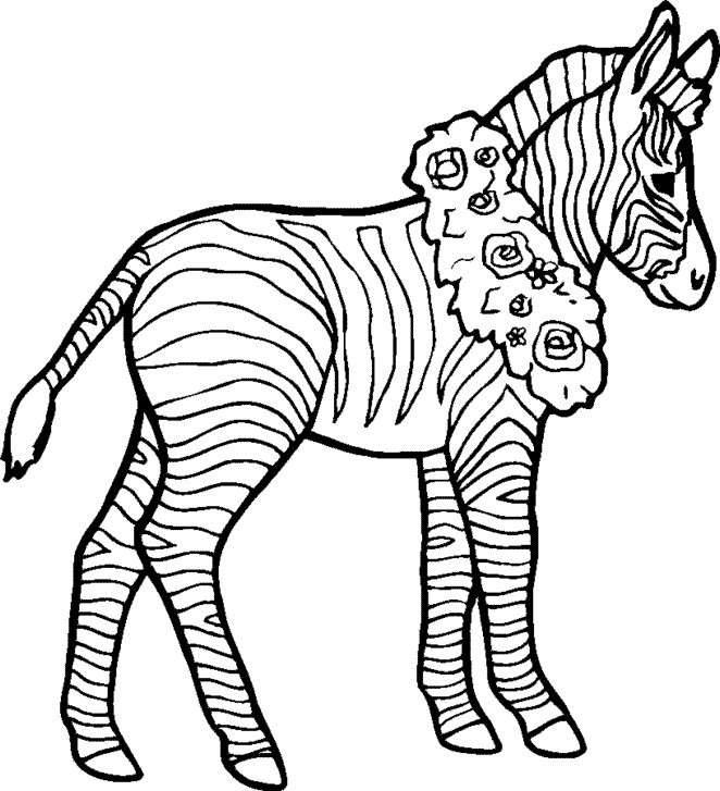 zebra coloring images free zebra coloring pages coloring zebra images