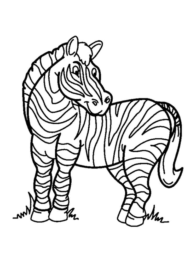 zebra coloring images zebra coloring pages free printable kids coloring pages images zebra coloring