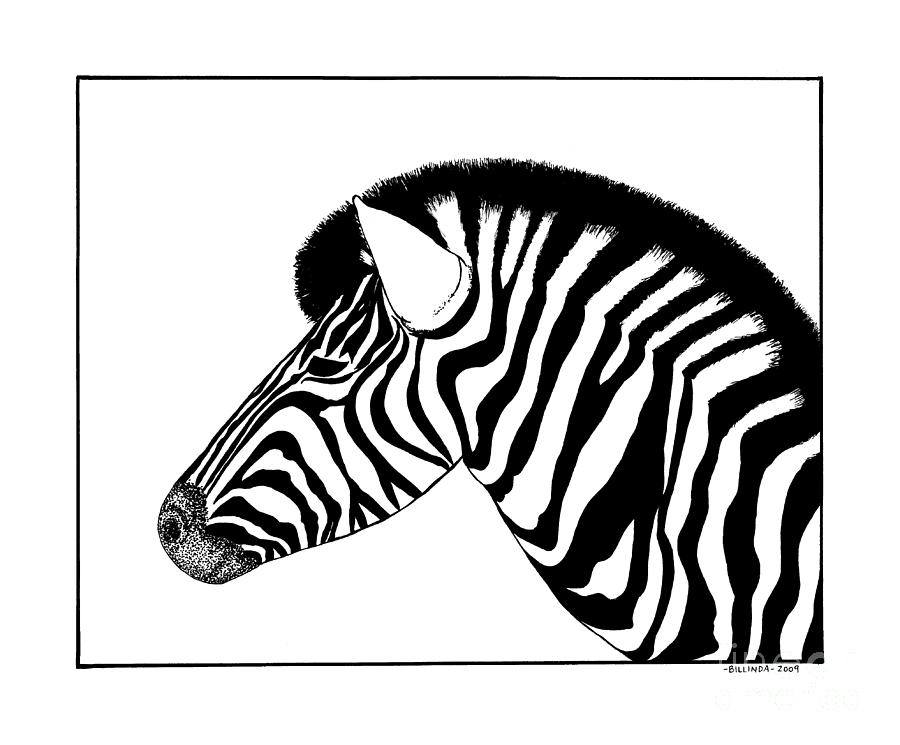 zebra drawing zebra face drawing free download on clipartmag zebra drawing
