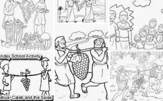12 spies coloring page cluster of grapes from the promised land bible coloring page 12 spies coloring
