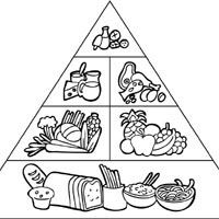 5 food groups coloring pages 12 best images of five food groups worksheets printable coloring pages food 5 groups
