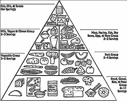 5 food groups coloring pages food group coloring pages coloring home pages 5 groups food coloring