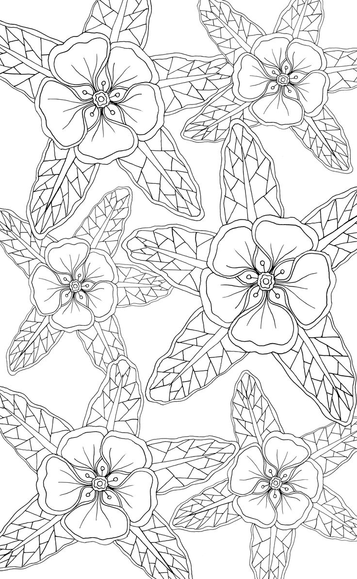 abstract flower coloring pages detailed flower coloring pages to download and print for free coloring abstract flower pages