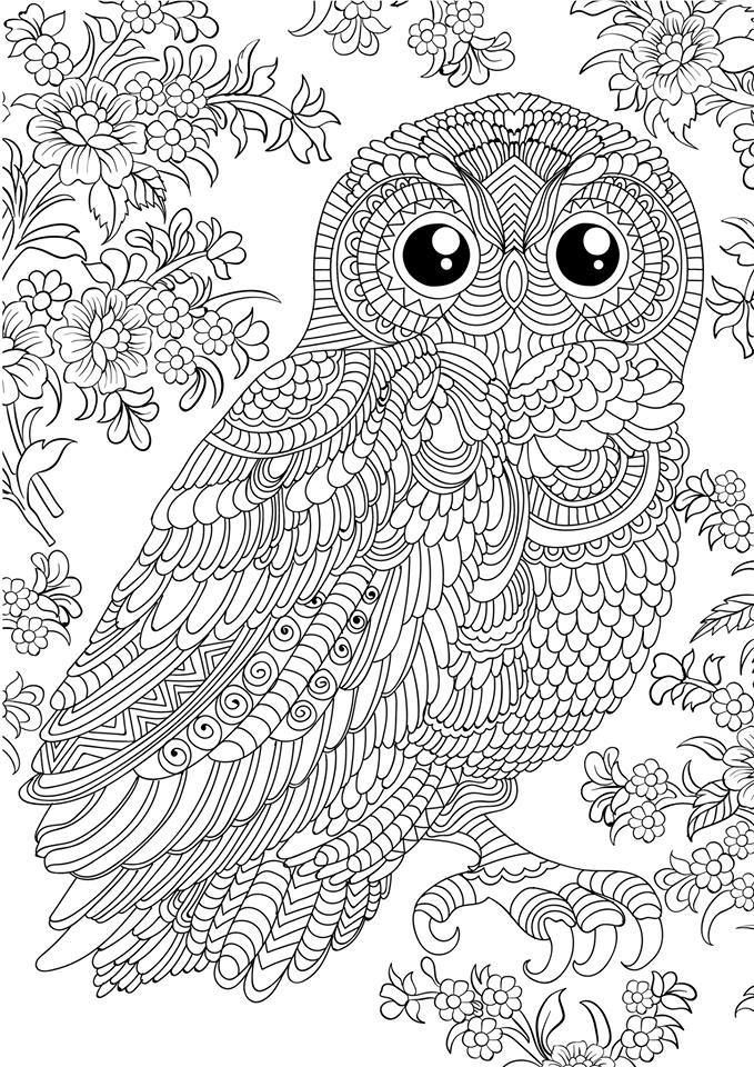 abstract owl coloring pages abstract owl coloring pages at getcoloringscom free owl abstract coloring pages