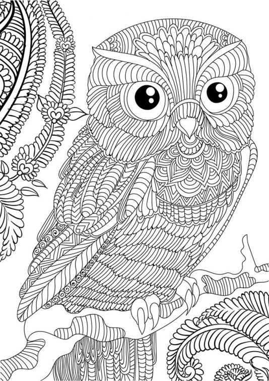 abstract owl coloring pages pin by southerngirl on color pages owl coloring pages coloring pages owl abstract