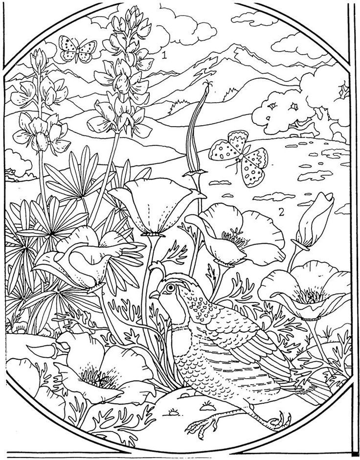 advanced coloring pages flowers advanced coloring pages flower coloring page 37 flowers pages coloring advanced