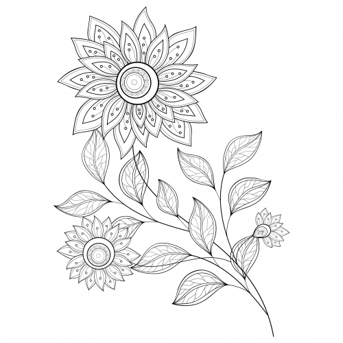 advanced coloring pages flowers advanced trend elegant flowers adult coloring pages pages coloring flowers advanced