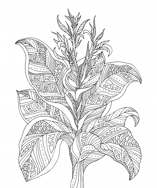 advanced flower coloring pages advanced coloring pages for artists bing images coloring pages advanced flower