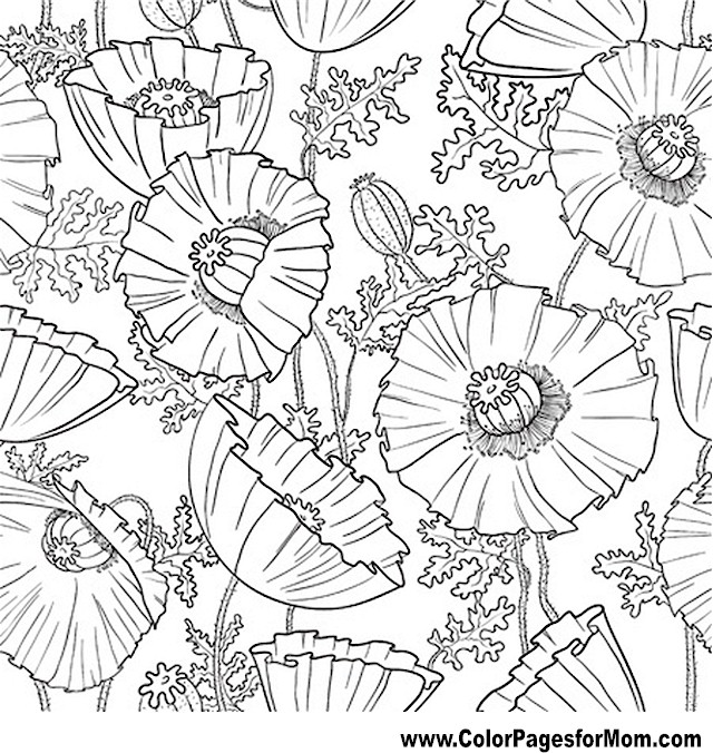 advanced flower coloring pages flower coloring pages advanced coloring home coloring advanced flower pages