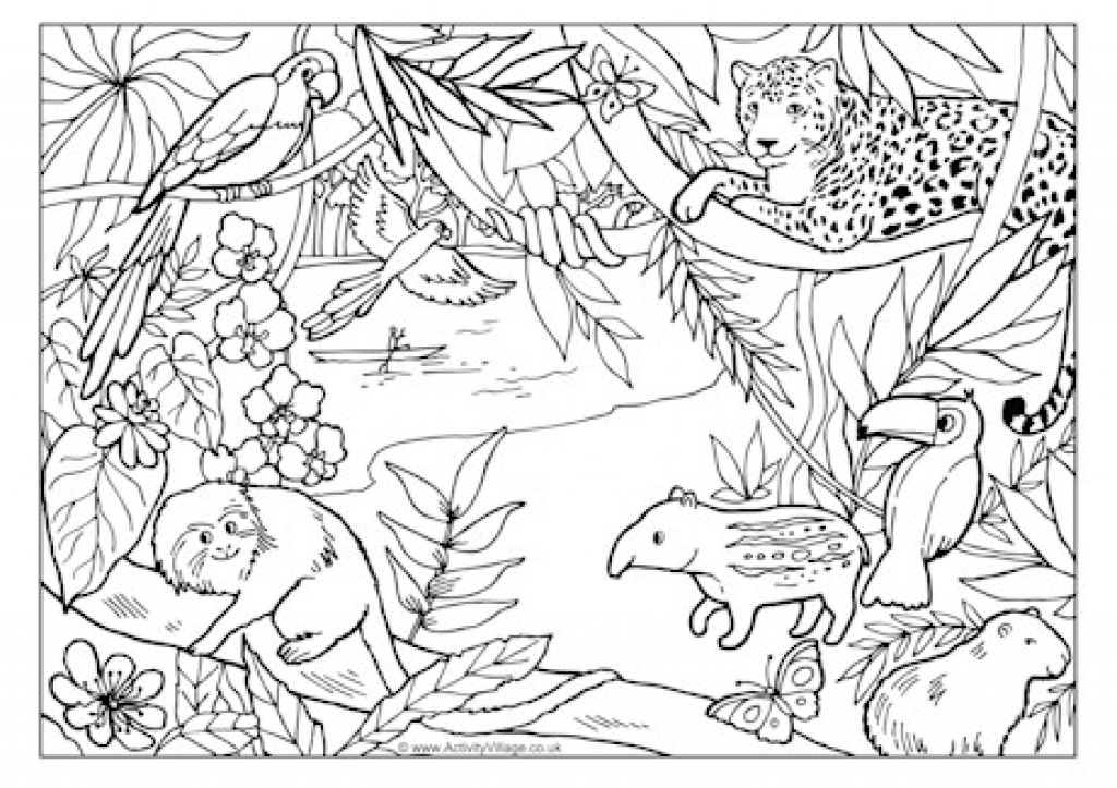 amazon rainforest pictures to print amazon rainforest drawing at getdrawingscom free for to print pictures rainforest amazon