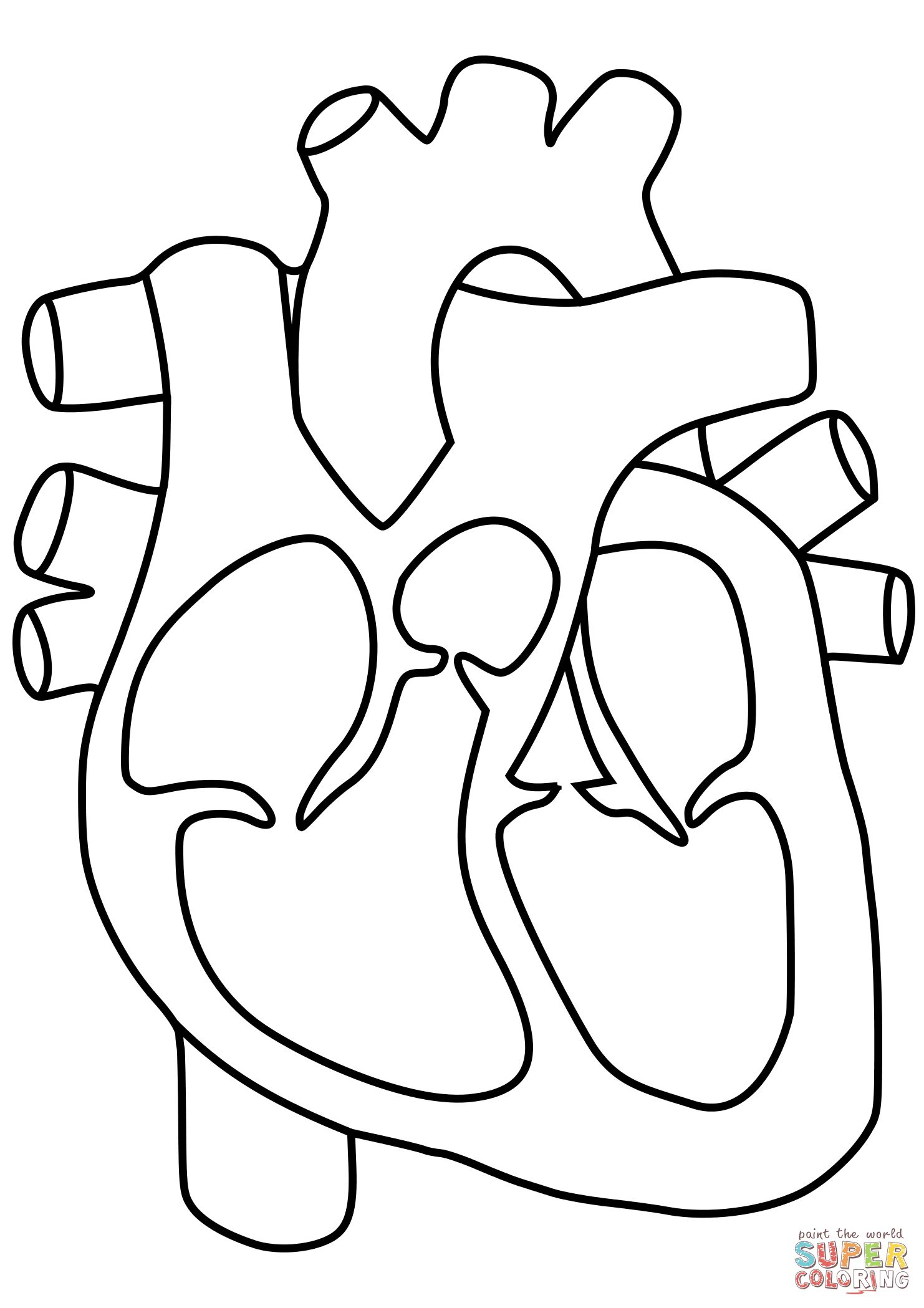 anatomical heart coloring pages anatomical heart coloring book vector for adults stock anatomical heart coloring pages