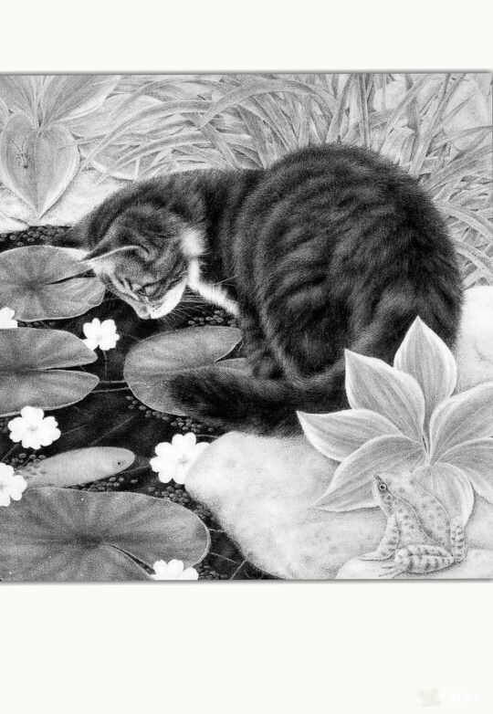 animal grayscale coloring pages 17 best images about animals of the wild grayscale on animal coloring pages grayscale