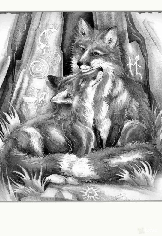 animal grayscale coloring pages 382 best images about animals of the wild grayscale on pages coloring animal grayscale