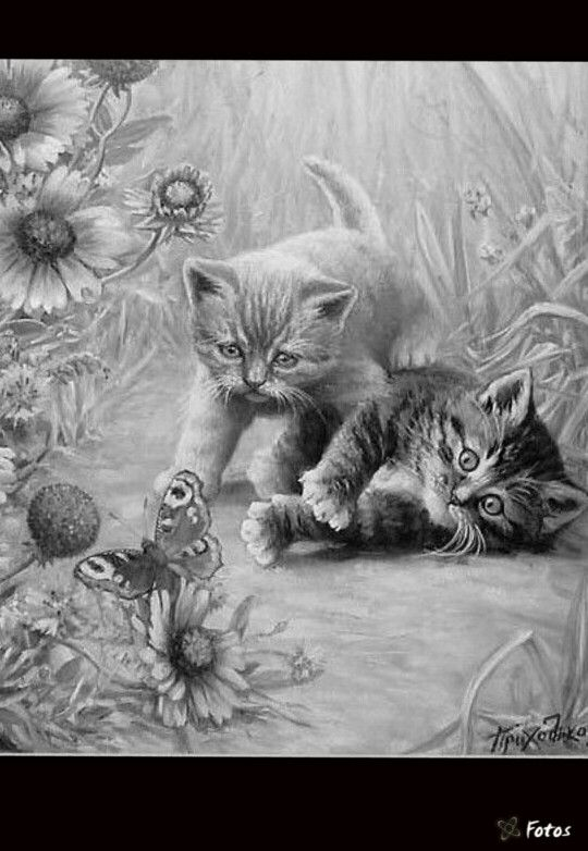 animal grayscale coloring pages 606 best grayscale pics images on pinterest drawings animal pages coloring grayscale