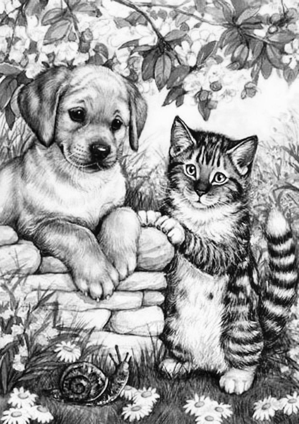 animal grayscale coloring pages coloring for adults kleuren voor volwassenen lion coloring pages grayscale animal