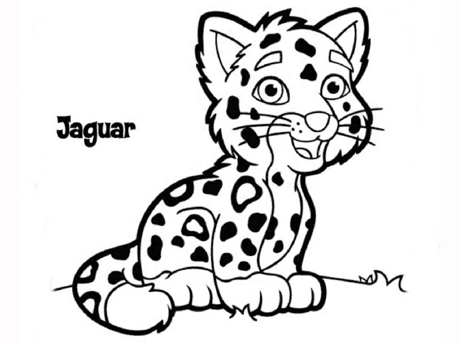 animal grayscale coloring pages jaguar animal facts pages animal grayscale coloring