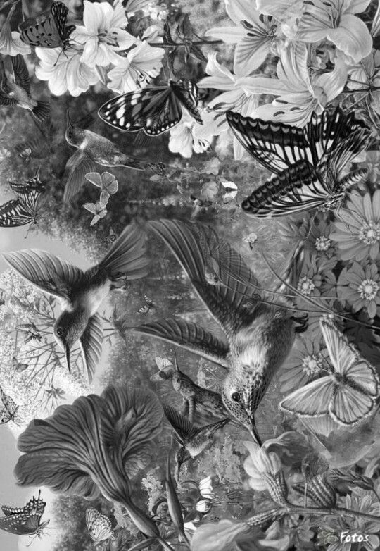 animal grayscale coloring pages pin on kleurplaten pages coloring animal grayscale