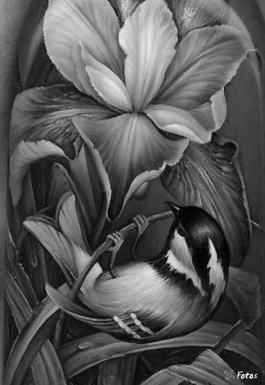 animal grayscale coloring pages the best grayscale coloring pages to print in 2020 coloring grayscale pages animal