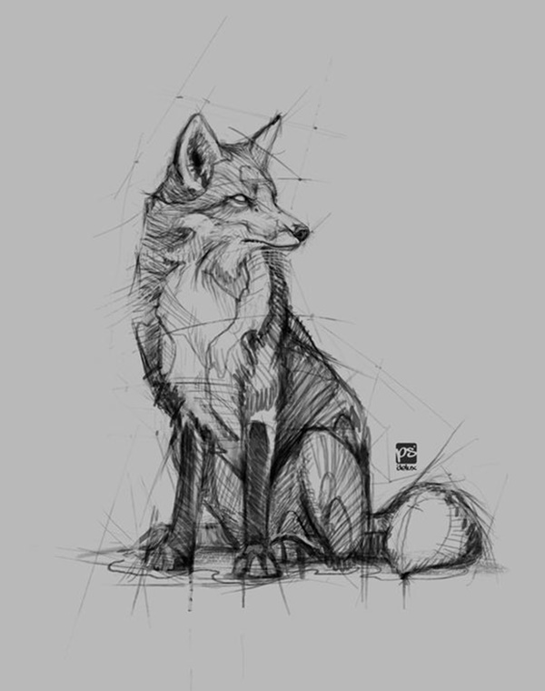 anime animal drawings 85 simple and easy pencil drawings of animals for every drawings anime animal