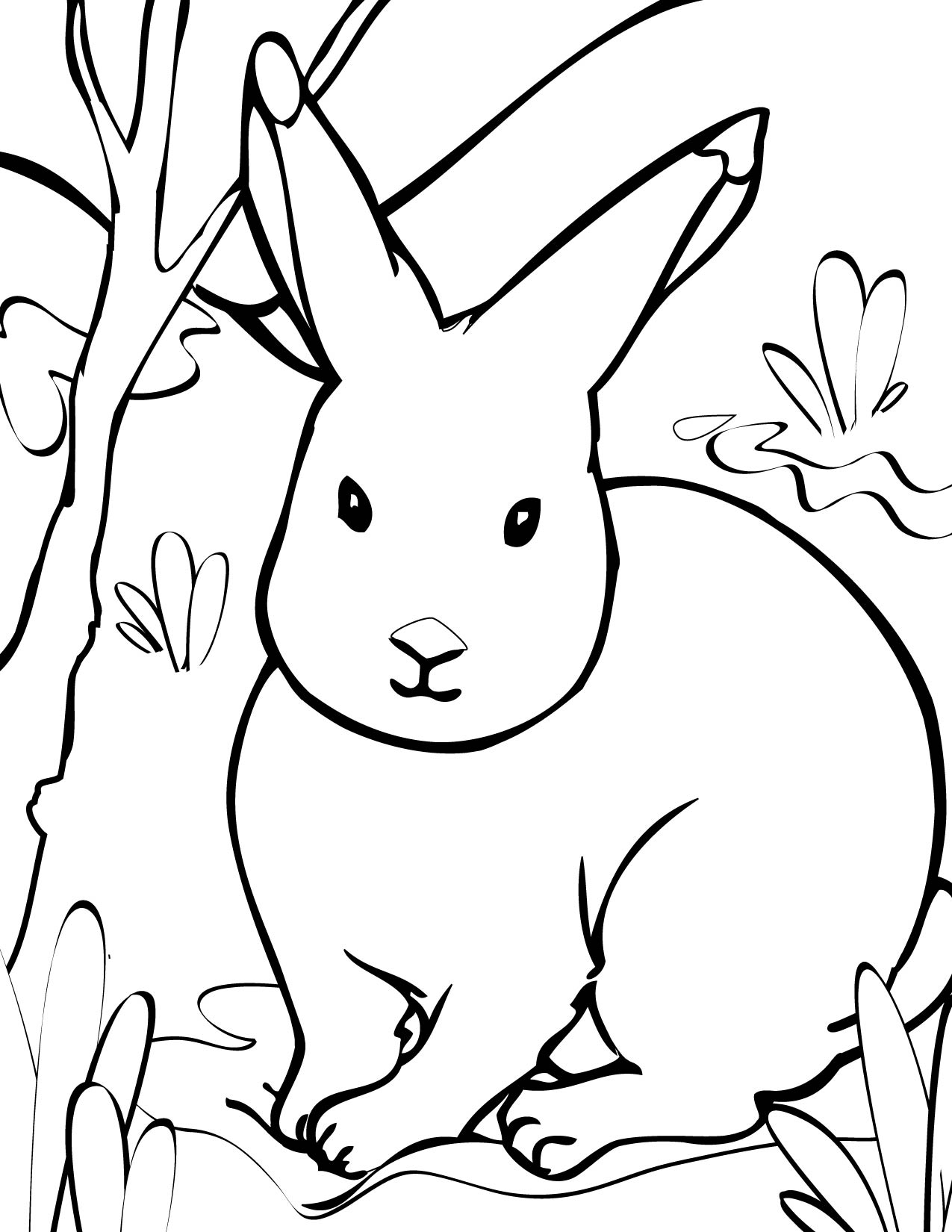 arctic animals coloring pages arctic animals song for children coloring animals pages arctic