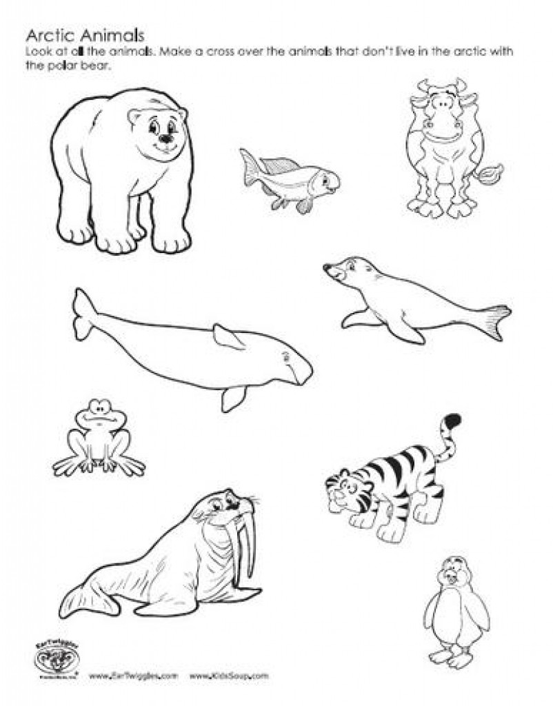 arctic animals coloring pages free printable arctic animals coloring pages coloring home pages animals coloring arctic