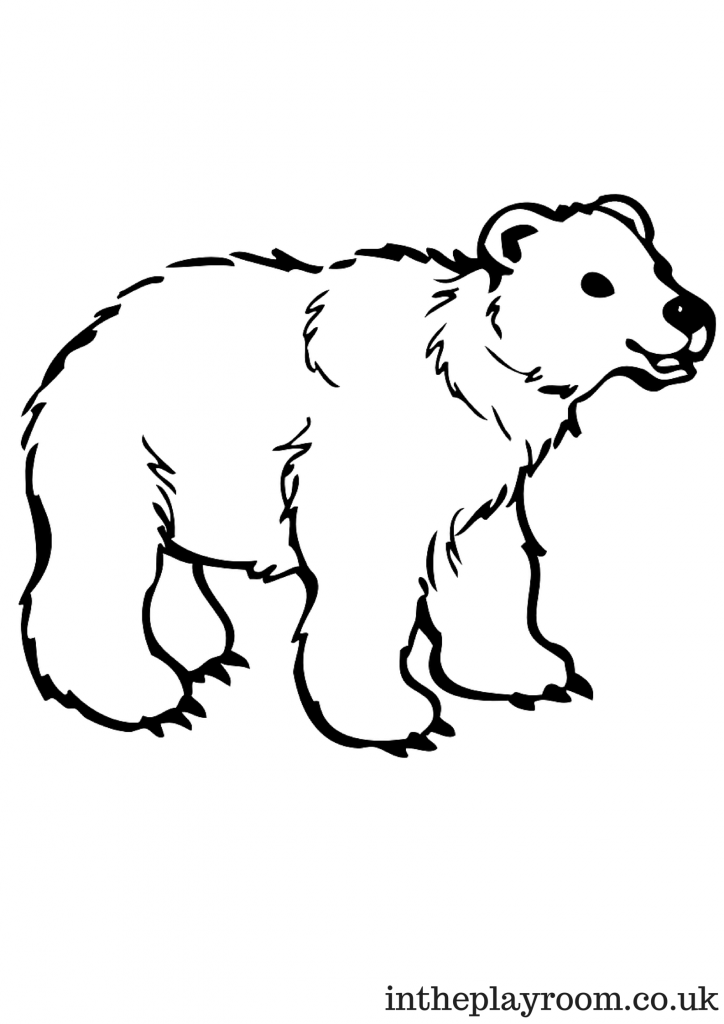 arctic animals coloring pages polar arctic animals coloring pages sketch coloring page arctic coloring animals pages