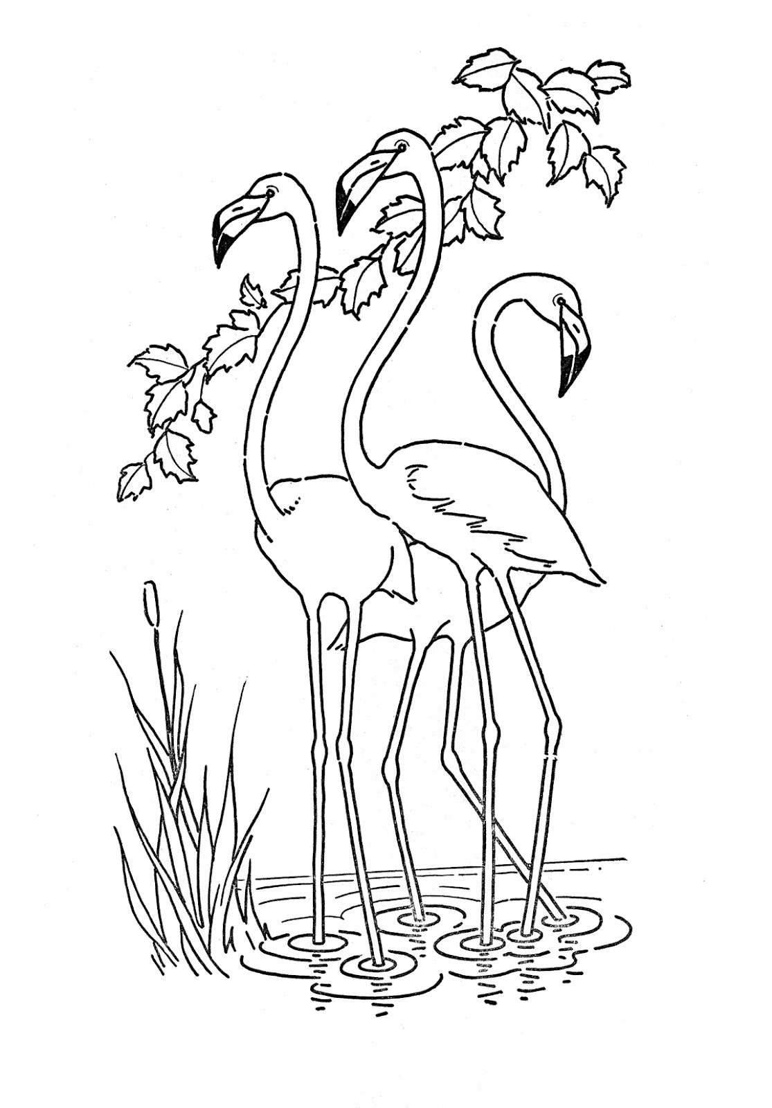 art pictures to color kids printable flamingo coloring page the graphics fairy pictures to art color