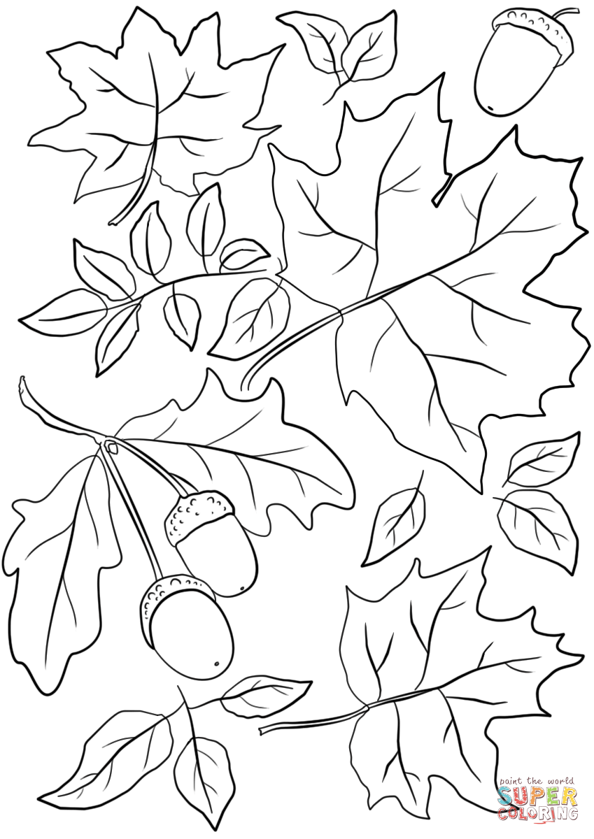 autumn leaves coloring pages autumn leaves coloring page crayolacom leaves autumn pages coloring