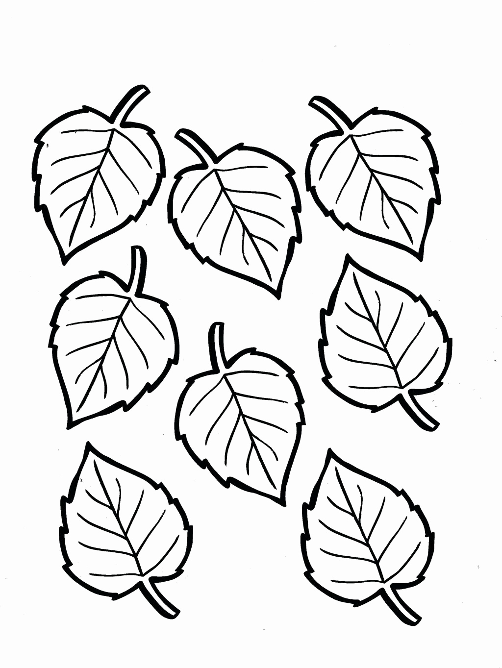 autumn leaves to color fall leaves coloring pages for kindergarten at leaves autumn to color
