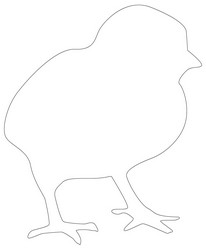 baby animal outlines baby animal clipart black and white clipground baby animal outlines