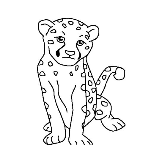 baby animal outlines farm animal outlines 28 outlines of printable farm animals baby outlines animal