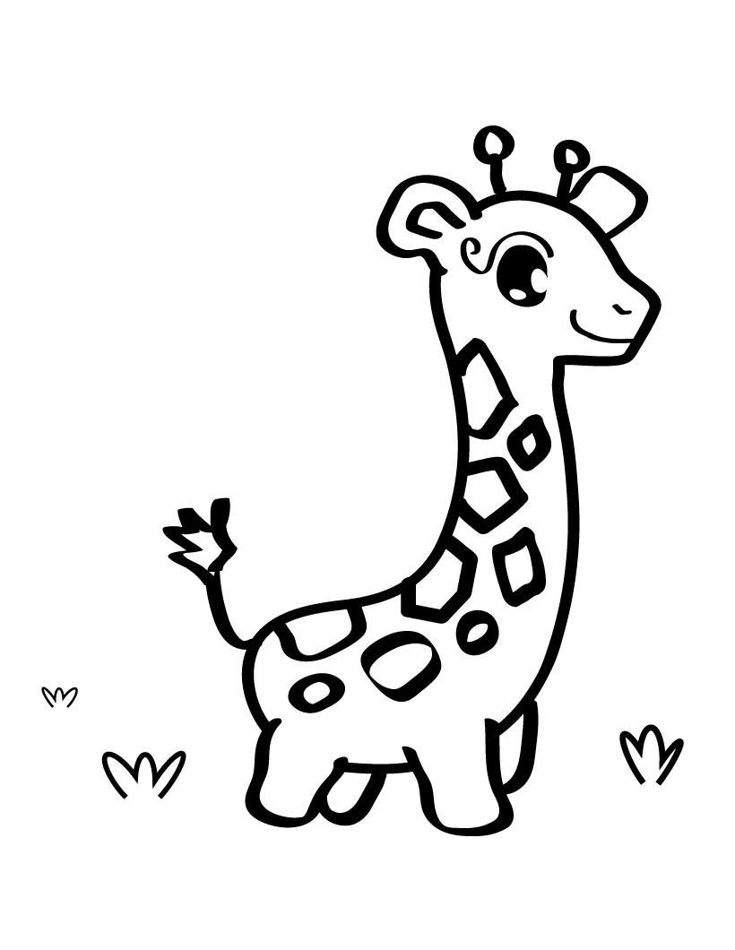 baby giraffe pictures to color baby giraffe coloring page giraffe coloring pages cool color baby giraffe pictures to