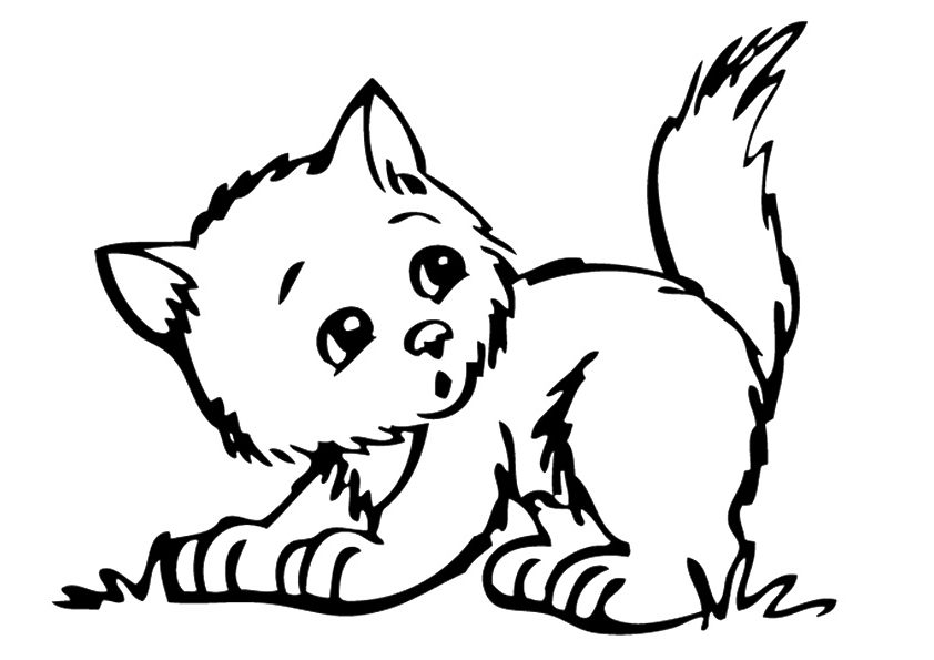 baby kitten coloring cute baby cats coloring pages animal pictures baby coloring kitten