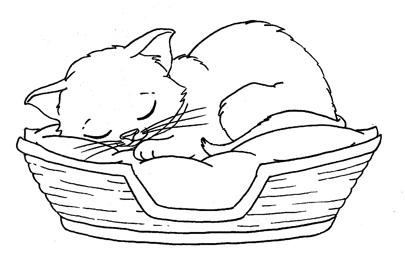 baby kitten coloring cute kitten coloring page free printable coloring pages baby coloring kitten