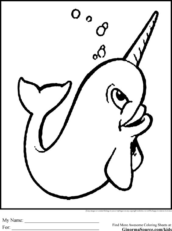 baby narwhal coloring pages cute baby narwhal coloring pages sketch coloring page baby narwhal pages coloring