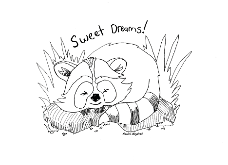 baby raccoon coloring page baby raccoon coloring pages at getdrawings free download page raccoon coloring baby