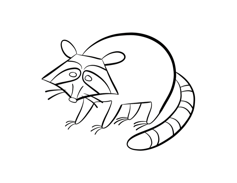 baby raccoon coloring page baby raccoon coloring pages coloring home coloring baby page raccoon