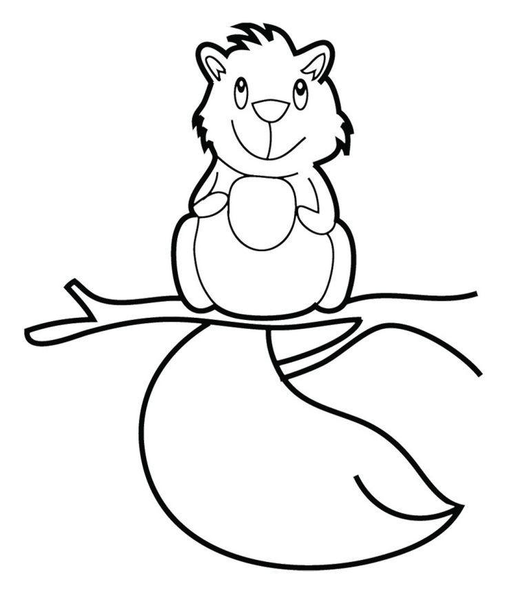 baby raccoon coloring page baby raccoon coloring pages coloring home raccoon baby coloring page